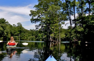 Slider 3 - Waccamaw River - credit Charles Slate