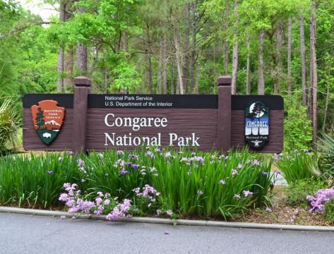 Congaree National Park (NPS)