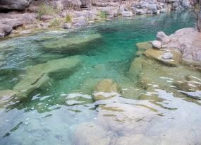 Fossil Creek - Darren Williams