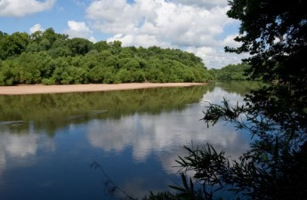 Congaree River sandbar | Steven McNamara