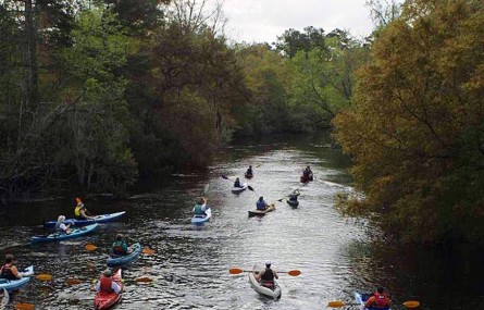 Paddling Ashley River - Dorchester State Park, NC | Ashley Chapman