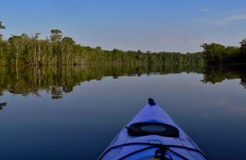 Waccamaw River Blue Trail, SC | Charles Slate