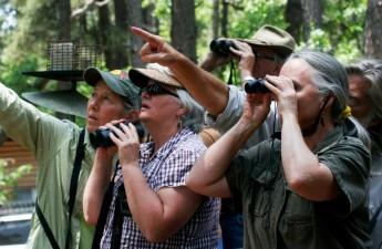 032415--Birding-Dena-Debbie-Wendy-Dennis-Randy--WendyHarford