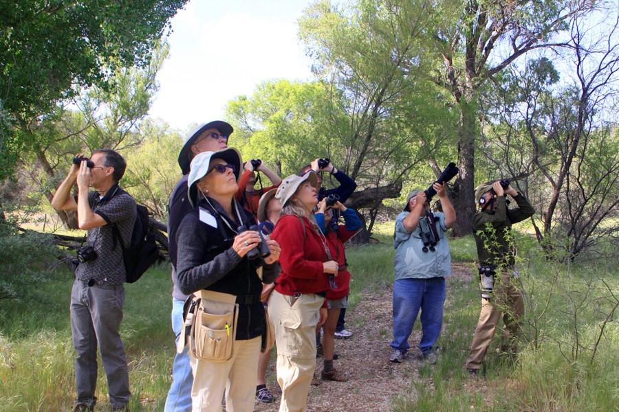 032415--BirdingFieldTrip2014--WendyHarford