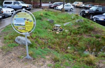 011216-This-raingarden-catches-stormwater-from-a-large-parking-lot-in-Nevada-City-CA-and-sinks-it-into-the-ground-JacobDyste-500x331
